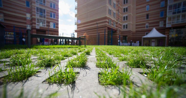 видео трава у дома Маск