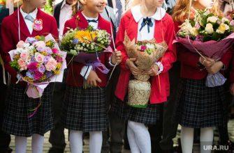 школьные линейки