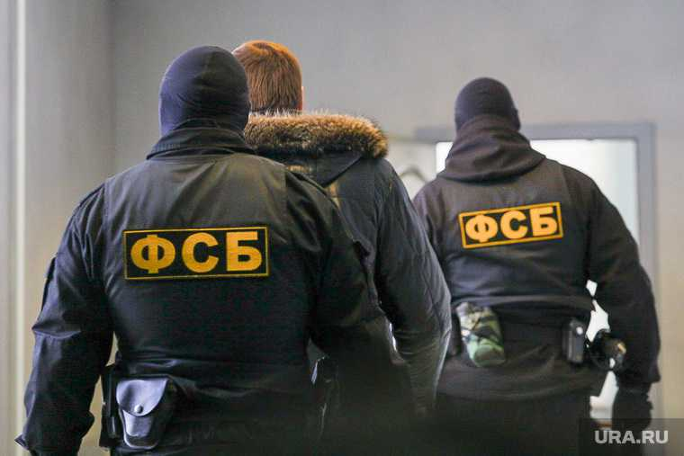 Челябинская область груз золото слитки ФСБ СКР фото