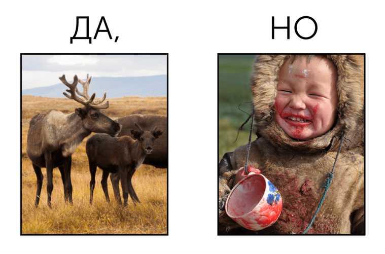 депутат Василий Степанов ЯНАО