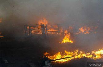 ветераны погибли в пожаре