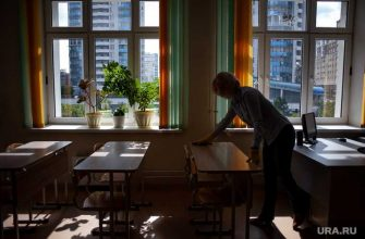 Власти РФ оценили идею перевода школ на дистанционное обучение