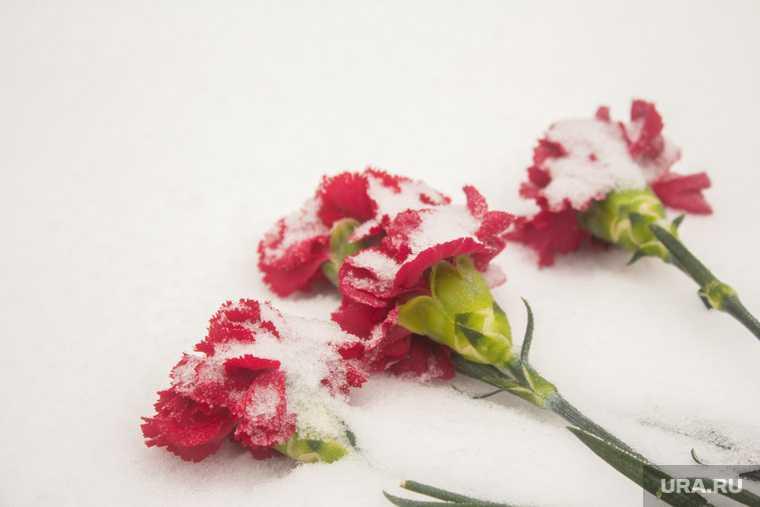 халатников причина смерти