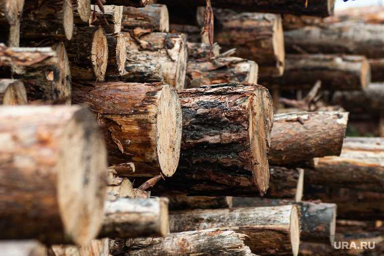 деревообработка УГМК «Титановая долина» Свердловская область