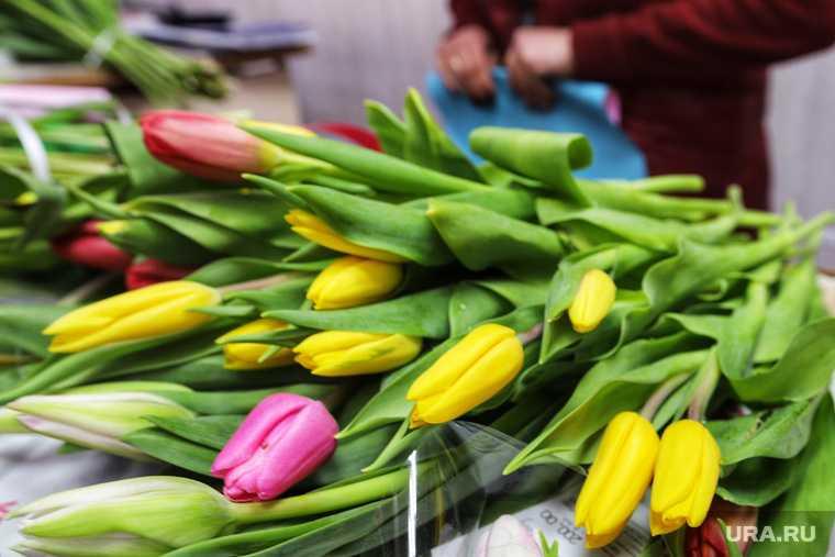цветы в Кургане