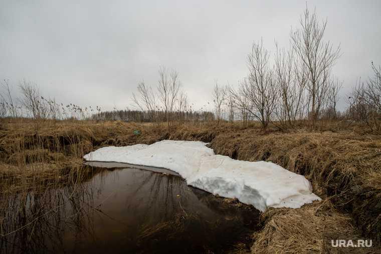 в России исчезнет зима