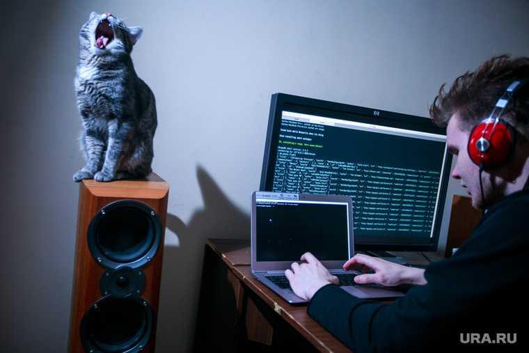 сеть интернет взломать вскрыть