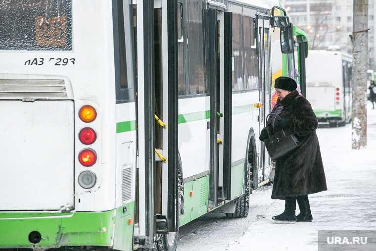 минтранс законопроект судимые запрет автобус трамвай троллейбус такси