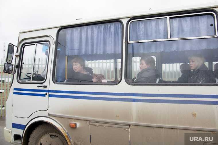 предприниматель пассажирские перевозки Краснокамск автобусы