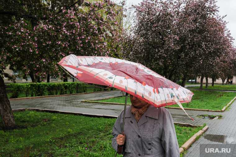 Челябинская область погода прогноз 24 25 26 мая жара похолодание