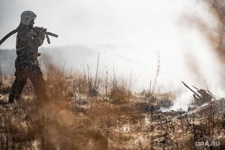 новости хмао пожары в югре лесные пожары гарит тайга кондинский район огонь пришел из тюмени