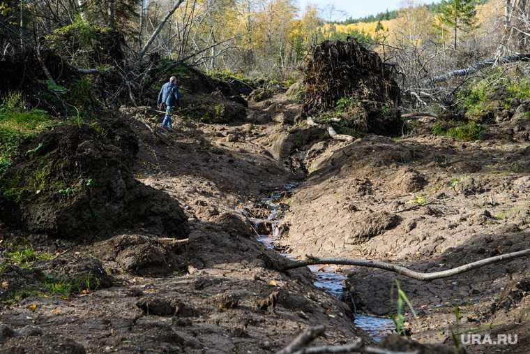 самые опасные регионы землетрясение ученые Россия сейсмическая опасность