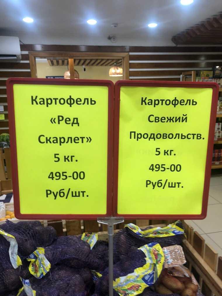 Тюменские фермеры разгневали жителей ценой на картофель. Фото