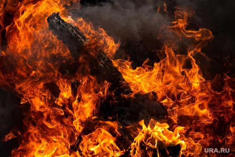 пожар в парке Маяковского