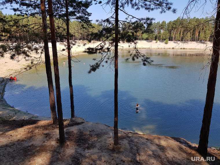 расторжение договора об аренде шести озер в Курганской области
